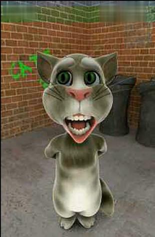 咆哮TOM猫恶搞《我家住在黄土高坡》