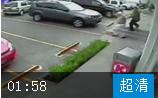 菜鸟停车搞笑合集