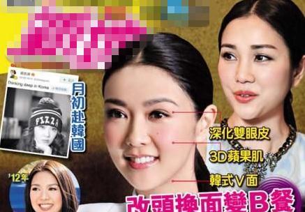 薛凯琪被指韩国整容 以谢安琪人妻形象当原型