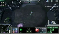 【鲸鱼】IPTL- EG.Stephano vs TL.Hero